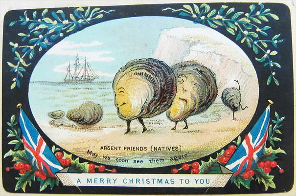 Scallops Christmas Card