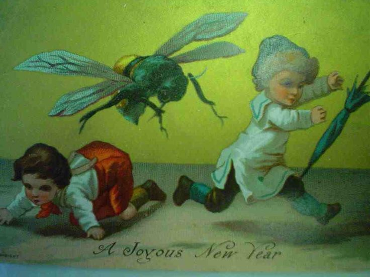 Wasp Christmas Card